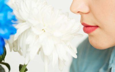 Rinoplàstia. La intervenció de cirurgia facial per a corregir el nas
